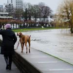 Hochwasser_007