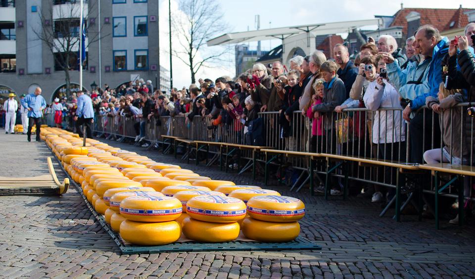 Der Käsemarkt in Alkmaar
