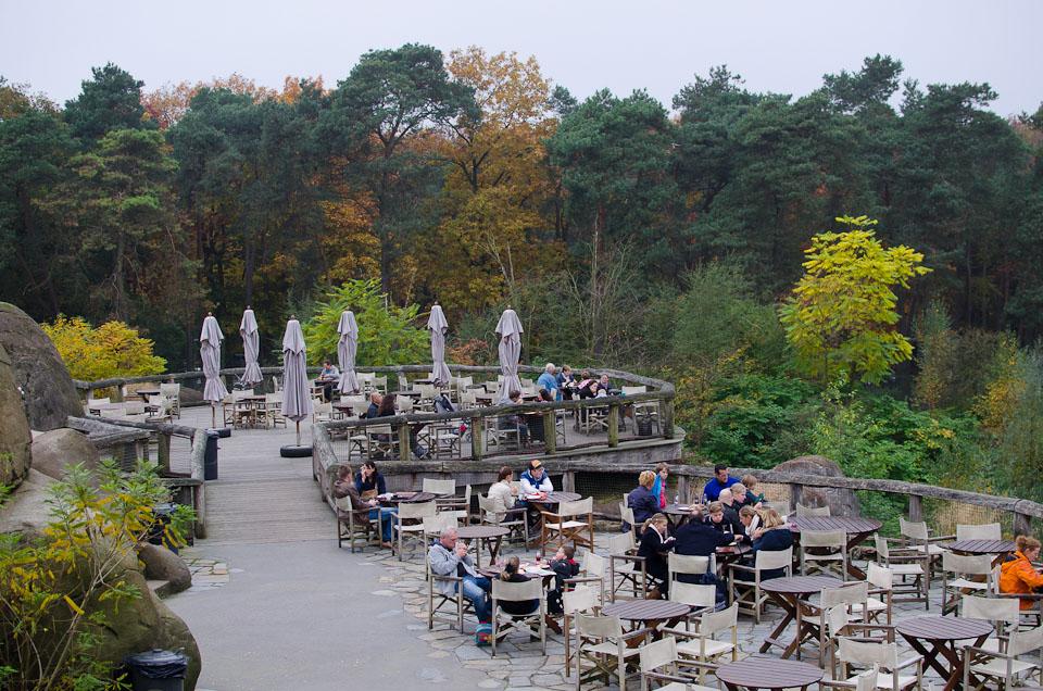 Picknickmöglichkeiten in Burgers Zoo in Holland