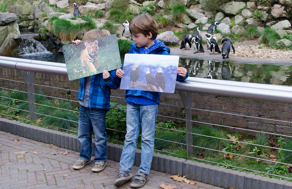 Souvenirshop Erinnerungen an Burgers Zoo