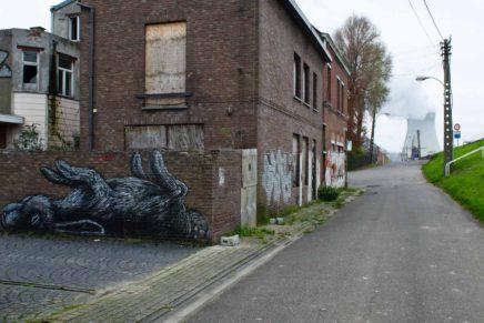 Das Streetart Geisterdorf in Belgien – Wie ROA und andere Künstler Doel in ein Kunstwerk verwandelten