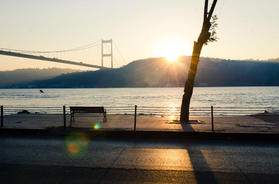 Istanbul_Fishmarket_024