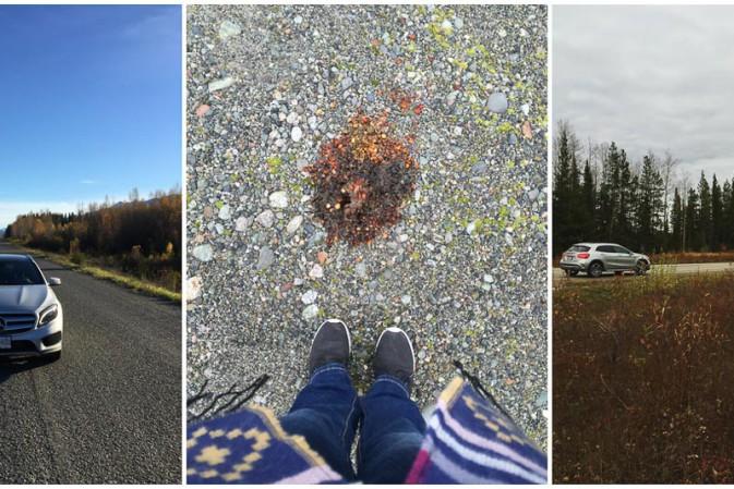 Roadtrip durch Kanada – Tipps, Erfahrungen und Learnings nach 3949 gefahrenen Kilometern