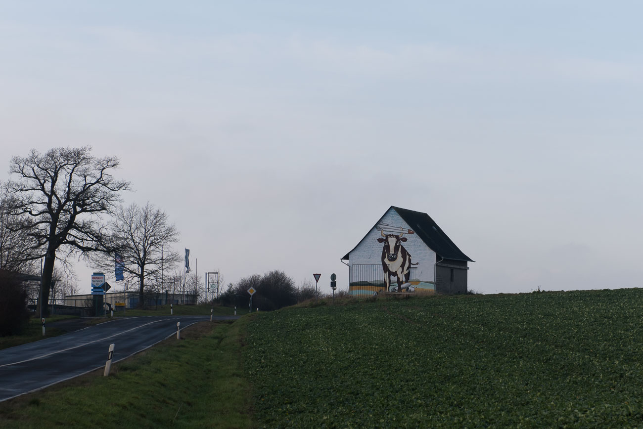 Der Weg zur Geierlay Bruecke