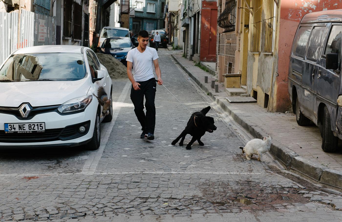 Balat_Istanbul-21